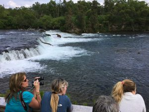 Brooks Falls Bear Viewing Platform by Kara Stenberg